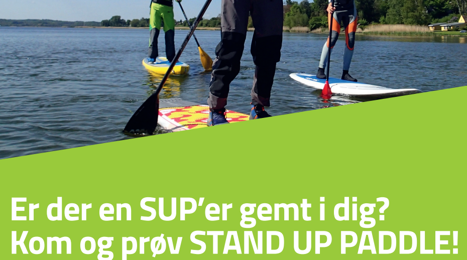 Stand_Up_Paddle_A3.png